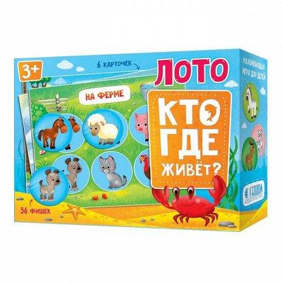 (20152)Геодом 12 - готовим интересные подарки — ЛОТО И ДОМИНО — Развивающие игрушки