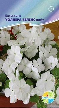 цветы 10 шт в уп Однолетник, h= 20 см, гибридный, белый.