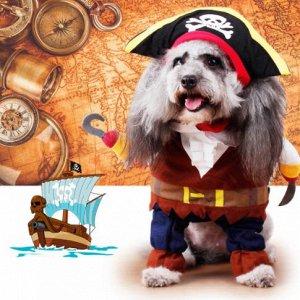юморной костюмчик пирата