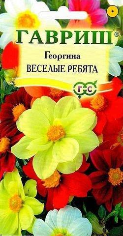 Георгина Веселые ребята 0,3 г