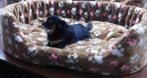 Лежак открытый для больших собак меховой