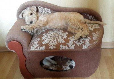 Кошкин дом-22🐱 — Диваны для животных, мебель — Для собак