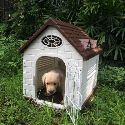 Кошкин дом-22🐱 — Для собак — Аксессуары и одежда