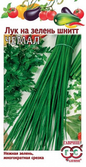 Лук шнитт Чемал, на зелень 0,5 г