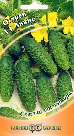 Семена «ГАВРИШ» в наличии, огромный ассортимент — ОГУРЕЦ ПАРТЕНОКАРПИЧЕСКИЙ — Семена овощей