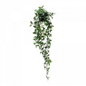ФЕЙКА Искусственное растение в горшке, д/дома/улицы, подвесной