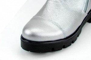 Ботинки кожа сильвер2 демисезон