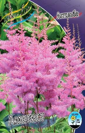 Подари себе ПРАЗДНИК! Экспресс- сбор!Пакетированные — Астильбы — Семена цветов