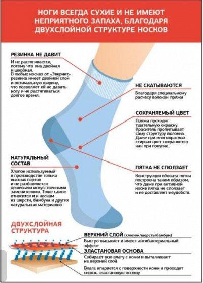 Носки Everneat для всей семьи. Из Владивостока с ❤ Новинки!  — Полезная информация! — Носки