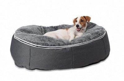 Бескаркасная Мебель + наполнитель для нее. Последняя.  — Мебель LUX - Лаунж подушка для любимцев — Для собак
