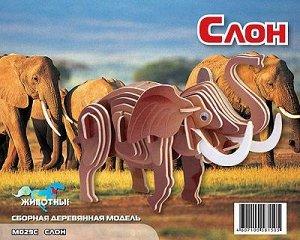 Маленький слон (цвет.)