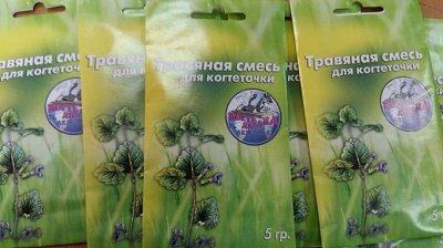 Уникальная когтедралка! Быстрая покупка! — Травяная смесь для когтеточки — Лакомства и витамины