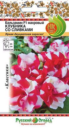 Цветы Бальзамин махровый Клубника со сливками F1 (6шт)