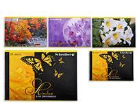 Альбом для рисования 24л,  внутренний блок 100 г/м2, обложка картон 235 г/м2