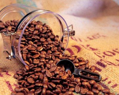 Свежеобжаренный кофе и чай! НОВИНКИ!  — Премиум эспрессо-смеси с Робустой — Кофе и кофейные напитки