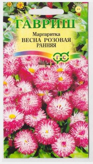 Маргаритка Весна розовая (Код: 11617)