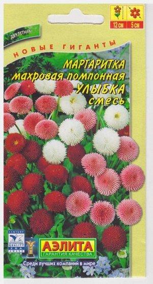 Маргаритка Улыбка (Код: 16432)