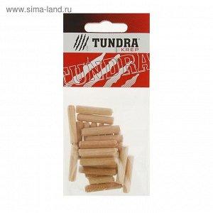 Шкант мебельный TUNDRA krep, 6х30 мм, в пакете 25 шт.