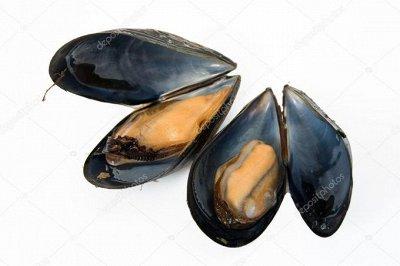Морепродукты ,Салаты - 17  — Морепродукты  — Рыбные