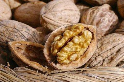 🍇☼Солнцефрукты☼-сухофрукты,орехи. Хурма Азербайджан!  —  Неочищенные орехи - в скорлупе — Орехи