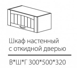 ШКН с откидной дверью 500*300*320мм