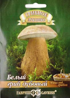 Грибы Белый гриб Дубовый (Код: 82369)