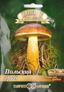Грибы Польский гриб (Код: 82190)