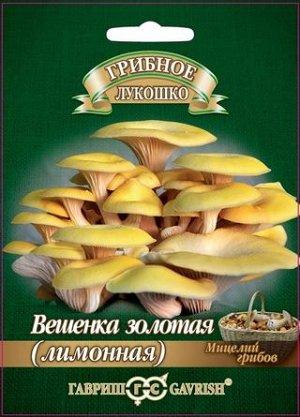 Грибы Мицелий Вешенка золотая Лимонная на древ.палочке /Гавриш/ 12 шт
