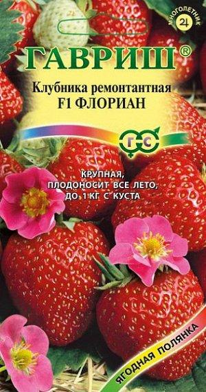 Клубника ремонтантная Флориан F1 (земляника)
