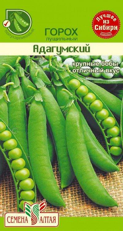 Алтайские семена — Горох — Семена овощей