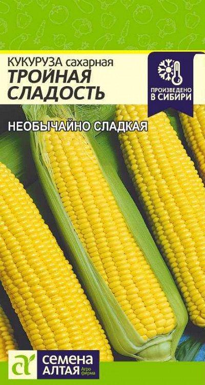 Алтайские семена — Кукуруза — Семена овощей