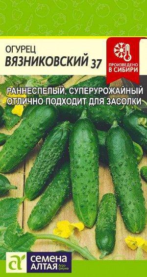 Огурец Вязниковский 37/Сем Алт/цп 0,5 гр.