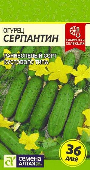Огурец Серпантин/Сем Алт/цп 0,5 гр. Сибирская Селекция!
