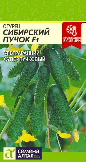 Огурец Сибирский Пучок F1/Сем Алт/цп 5 шт. НОВИНКА!