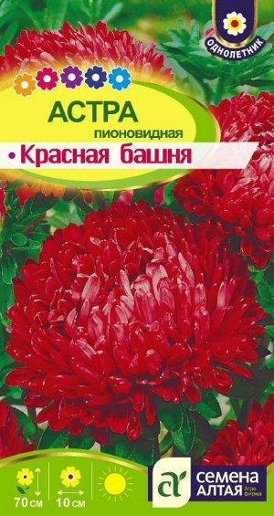 Астра Красная Башня пионовидная/Сем Алт/цп 0,2 гр.