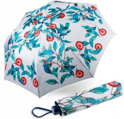 Одежда и аксессуары для всей семьи - Быстрая раздача! — Женские зонты — Зонты и дождевики