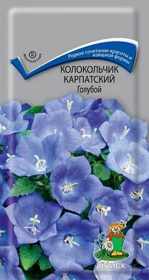 Колокольчик Карпатский Голубой