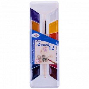 """Акварель Гамма """"Лицей"""", медовая, 12 цветов, с кистью, пластик. упак."""