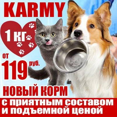 Karmy - корм для собак и кошек премиум класса! №23 — -10% Для Самых Преданных- корм premium medium класса — Корма