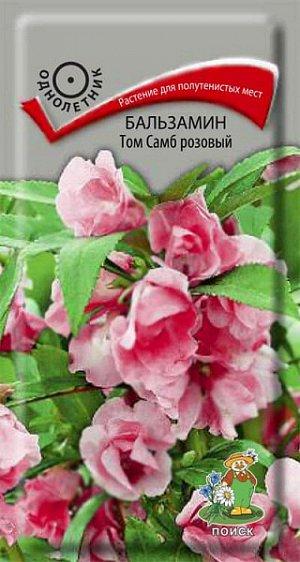 Бальзамин Том Самб розовый (махровый)