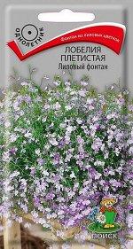 Лобелия Плетистая Лиловый фонтан