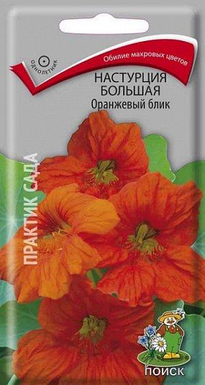 Настурция Большая Оранжевый блик (махровая)