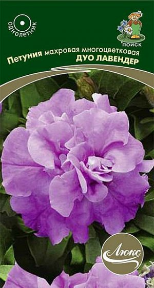 Петуния Махровая многоцветковая Дуо лавендер