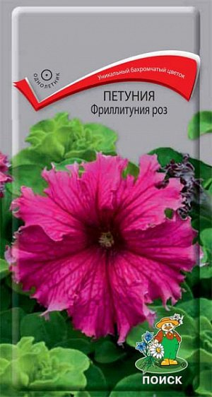 Петуния Фриллинтуния роз