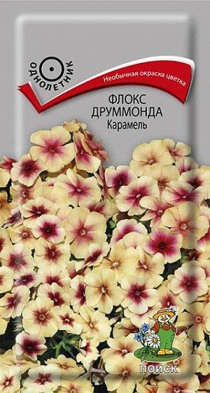 Флокс друммонда Карамель ЦП