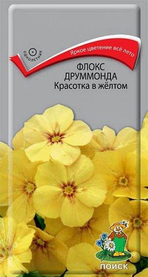 Флокс Друммонда Красотка в желтом