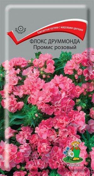 Флокс Друммонда Промис розовый (махровый)