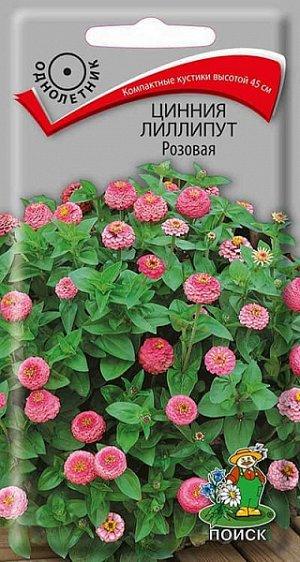 Цинния Лиллипут Розовая