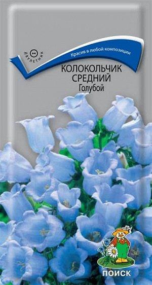 Колокольчик Средний Голубой