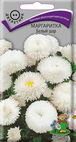 Маргаритка Белый шар (махровая)